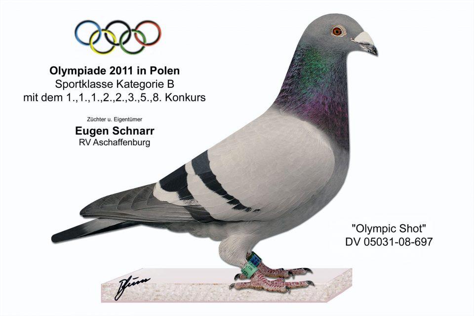 olympicshot